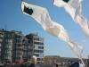 Serpent Delta kites