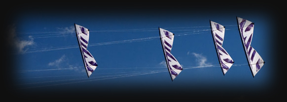 The Flying Squad Kite Display Team